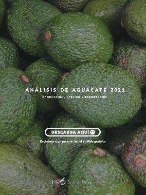 producepay-sidebar-analisis-aguacate-2021