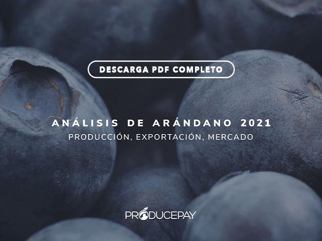 producepay-white-paper-analisis-de-arandano-azul-2021