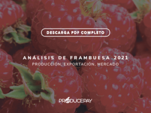 producepay-white-paper-analisis-frambuesa-2021