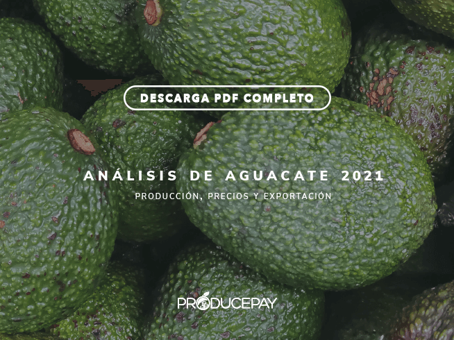 producepay-analisis-aguacate-white-paper-2021
